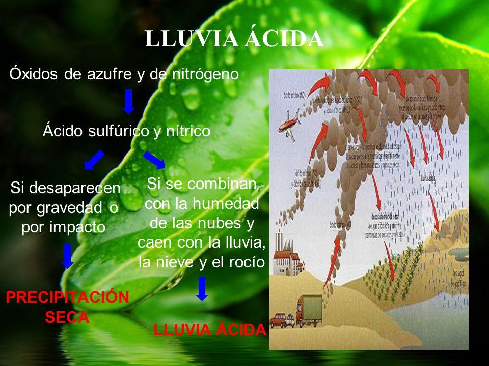 LLUVIA ÁCIDA Óxidos de azufre y de nitrógeno Ácido sulfúrico y nítrico Si desaparecen por gravedad o por impacto Si se combinan con la humedad de las
