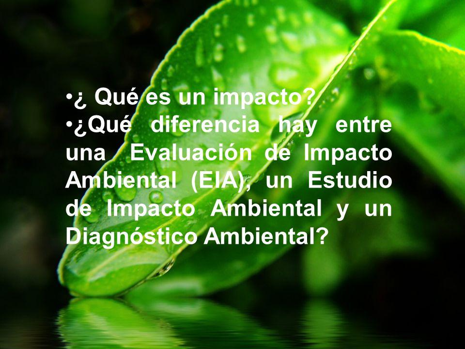 ¿ Qué es un impacto? ¿Qué diferencia hay entre una Evaluación de Impacto Ambiental (EIA), un Estudio de Impacto Ambiental y un Diagnóstico Ambiental?