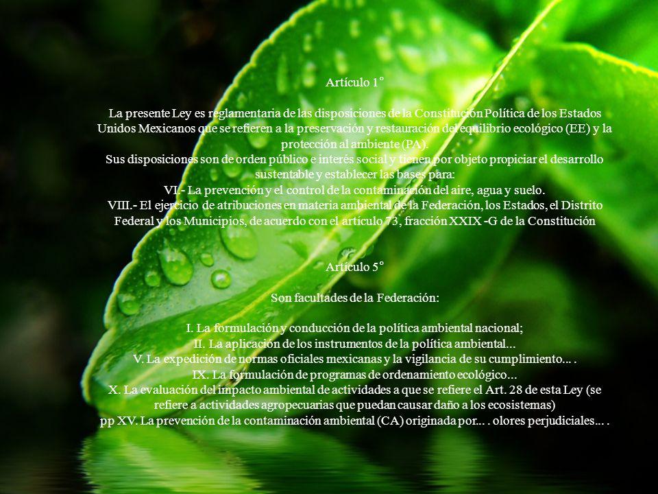 Artículo 1° La presente Ley es reglamentaria de las disposiciones de la Constitución Política de los Estados Unidos Mexicanos que se refieren a la pre