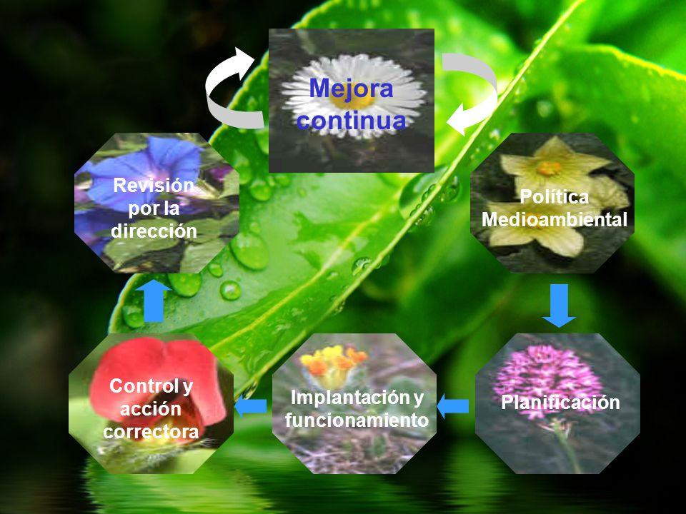 Política Medioambiental Planificación Implantación y funcionamiento Control y acción correctora Revisión por la dirección Mejora continua