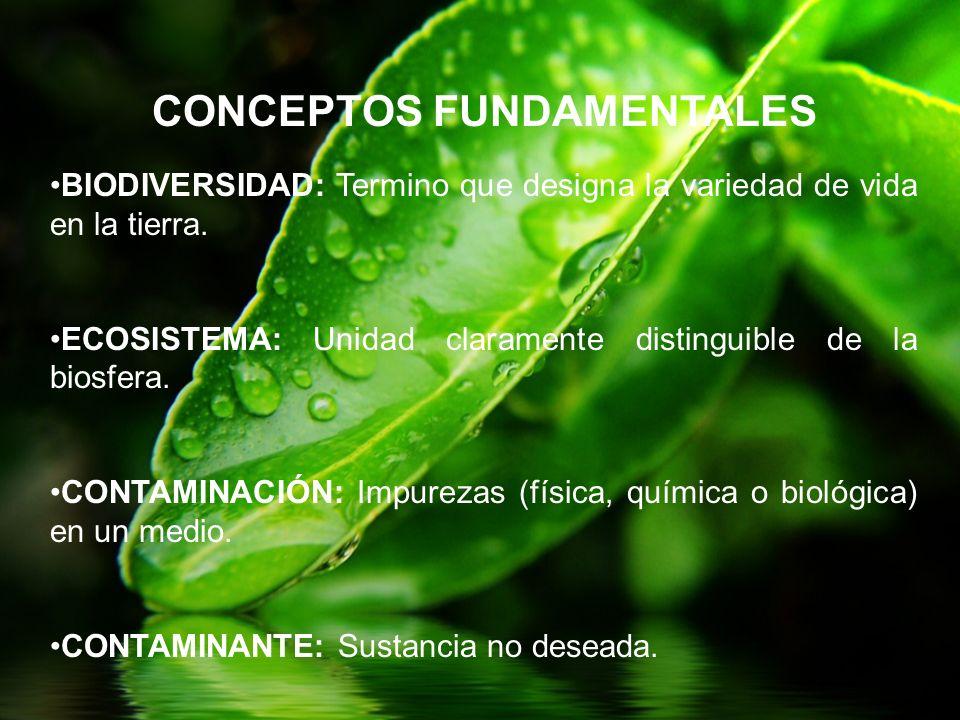 BIODIVERSIDAD: Termino que designa la variedad de vida en la tierra. ECOSISTEMA: Unidad claramente distinguible de la biosfera. CONTAMINACIÓN: Impurez