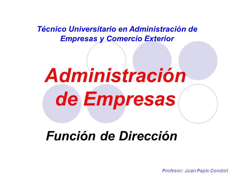 Administración de Empresas Técnico Universitario en Administración de Empresas y Comercio Exterior Función de Dirección Profesor: Juan Papic Condori