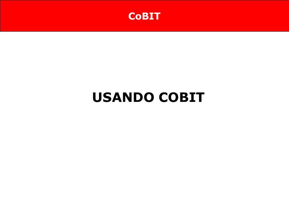 USANDO COBIT CoBIT