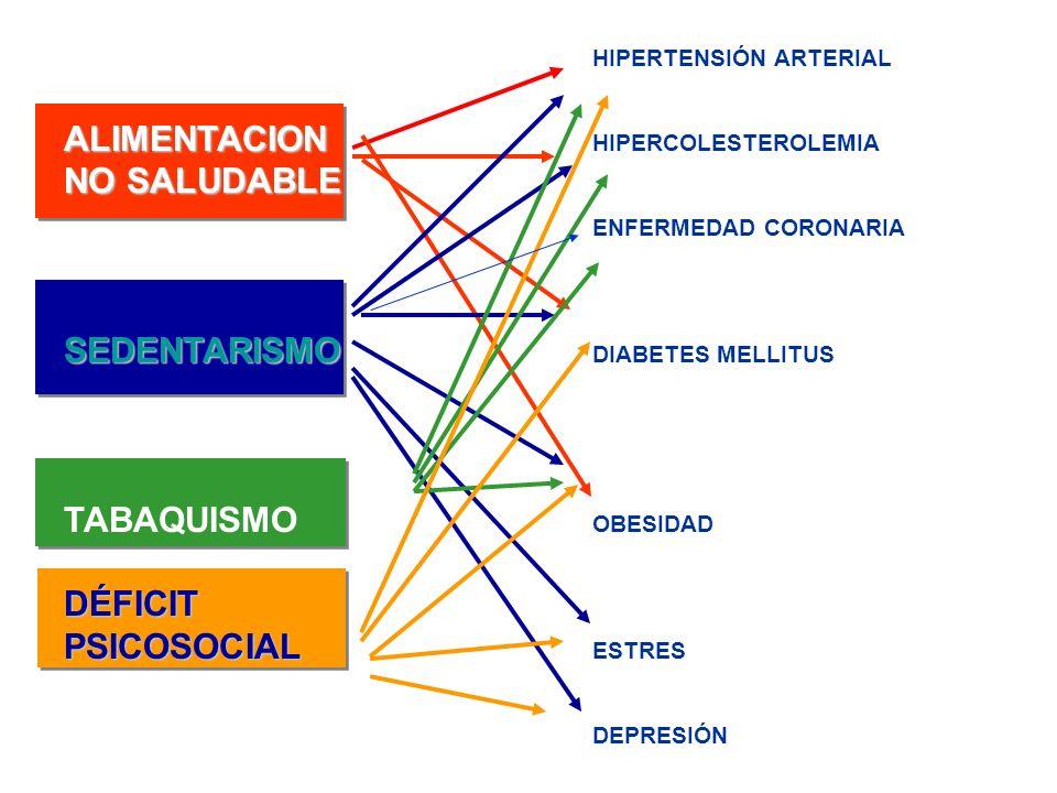 HIPERTENSIÓN ARTERIAL ALIMENTACION ALIMENTACION HIPERCOLESTEROLEMIA NO SALUDABLE ENFERMEDAD CORONARIA SEDENTARISMO SEDENTARISMO DIABETES MELLITUS TABA