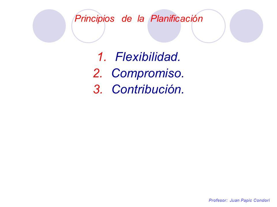 Principios de la Planificación Profesor: Juan Papic Condori 1.Flexibilidad. 2.Compromiso. 3.Contribución.