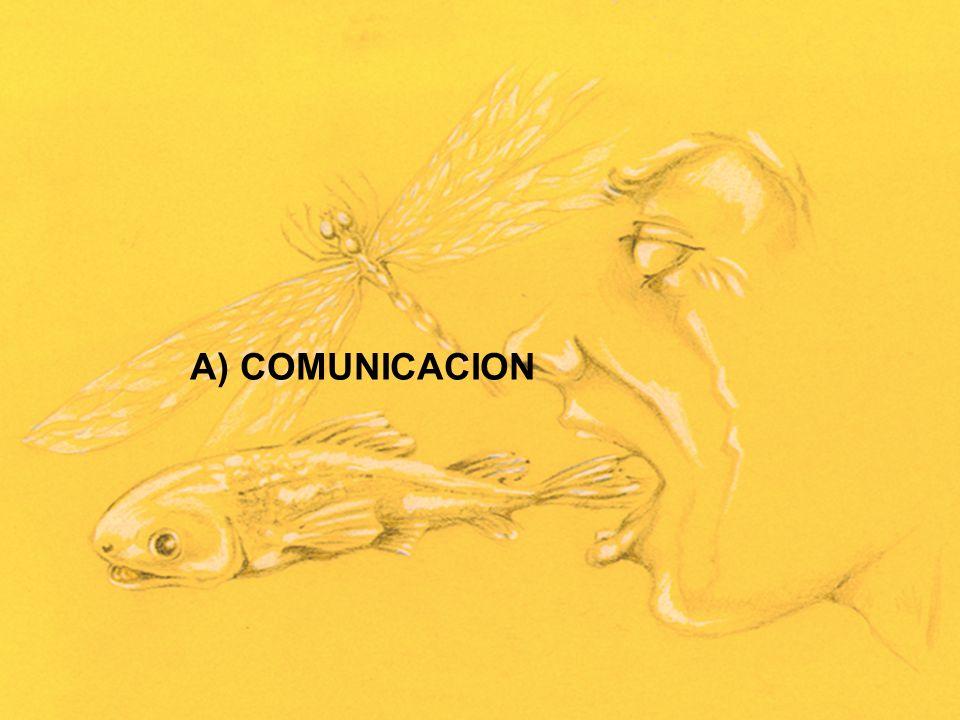 A) COMUNICACION