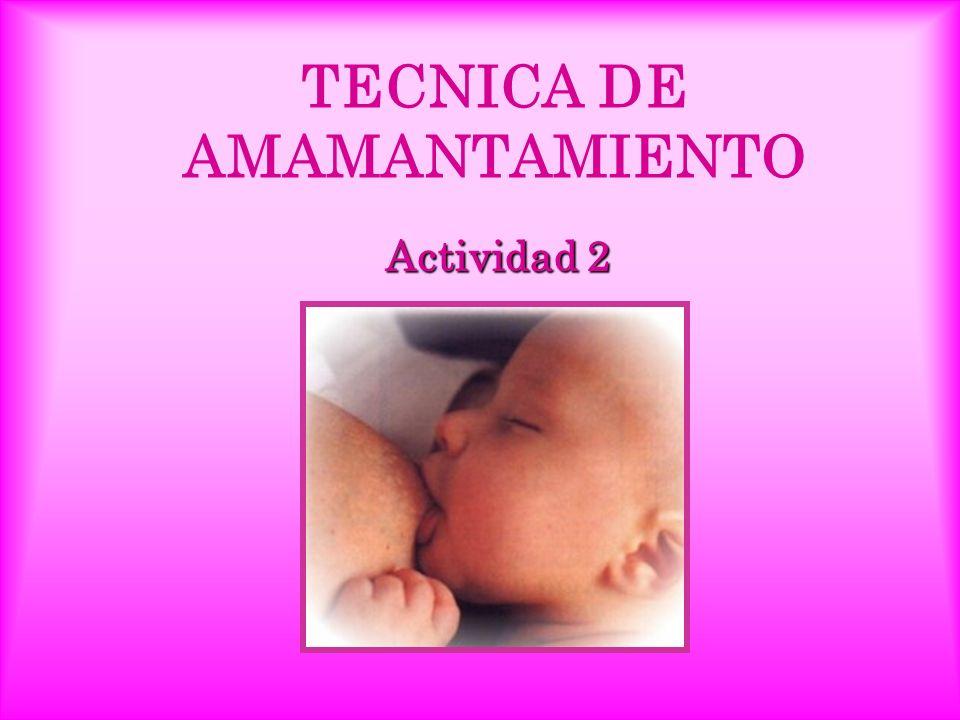 TECNICA DE AMAMANTAMIENTO Actividad 2