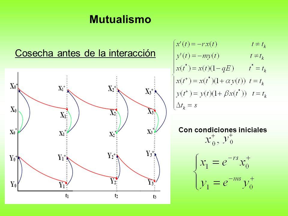 Cosecha antes de la interacción Mutualismo Con condiciones iniciales