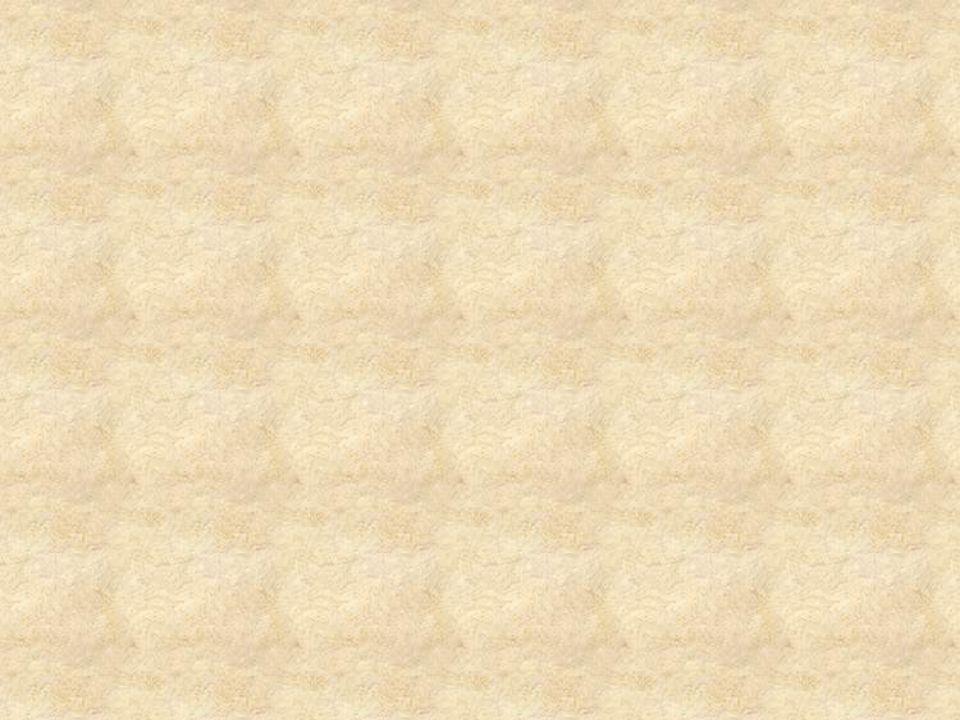 Reformas que provocaron malestar (Borbones segunda mitad del siglo XVIII) La Modernización de los sistemas de cobro de impuestos Motines o levantamientos Liberalización del Comercio Efecto negativo para las colonias Americanas Contrabando Saturación de los productos extranjeros en los mercados