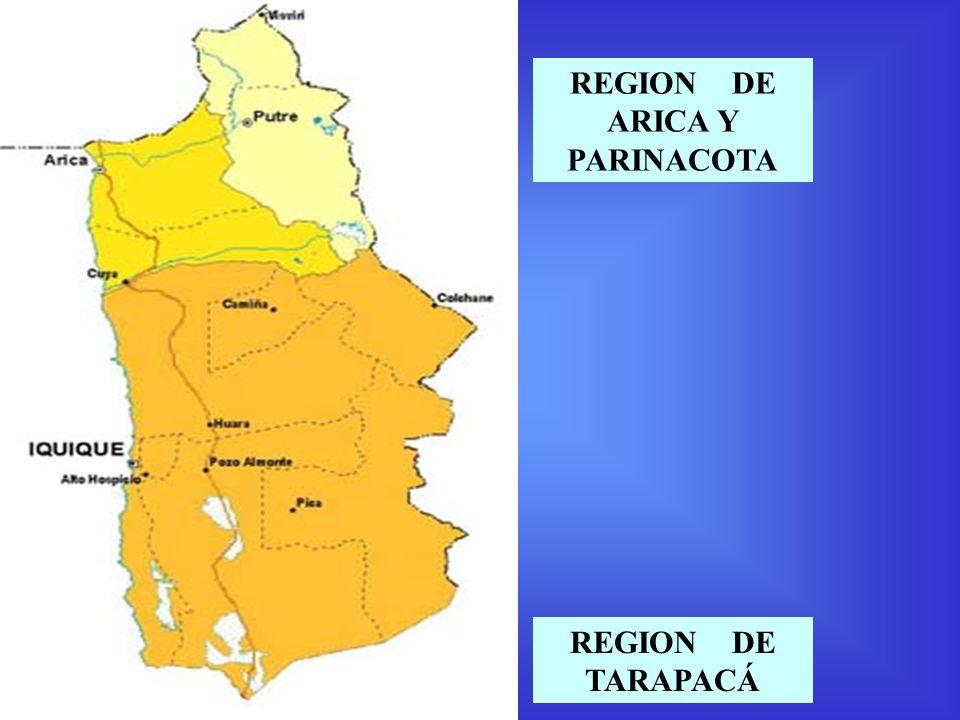 REGION DE TARAPACÁ REGION DE ARICA Y PARINACOTA