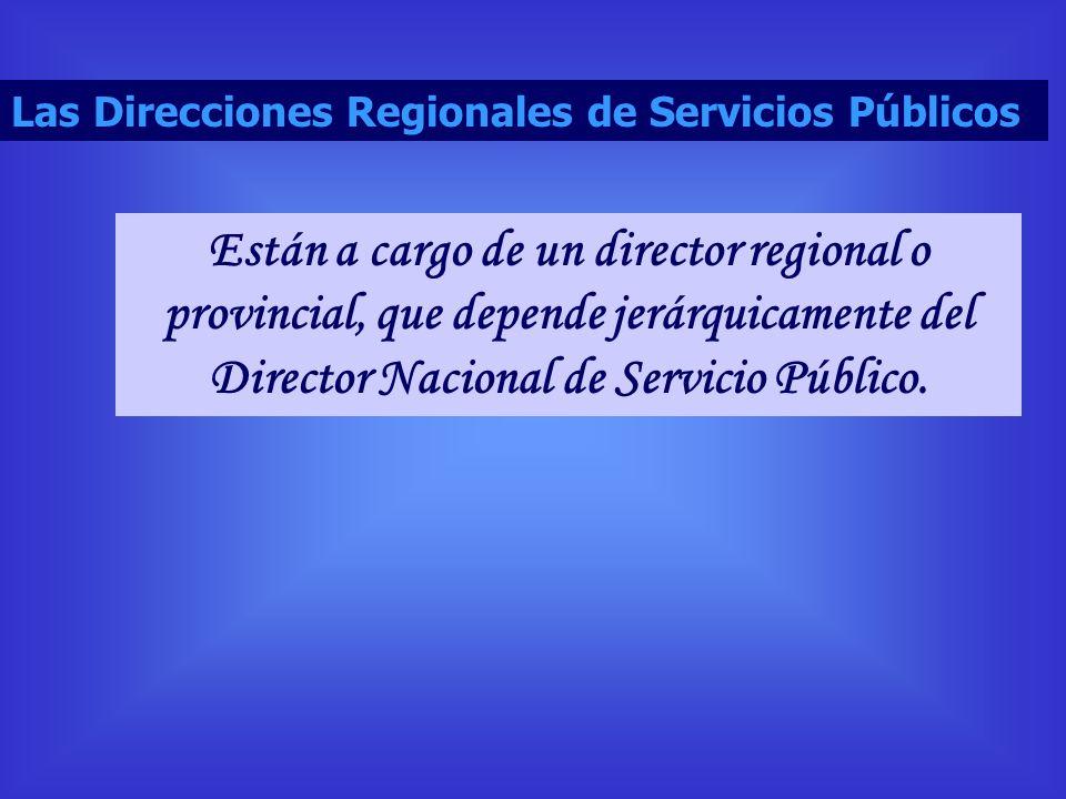 Están a cargo de un director regional o provincial, que depende jerárquicamente del Director Nacional de Servicio Público. Las Direcciones Regionales