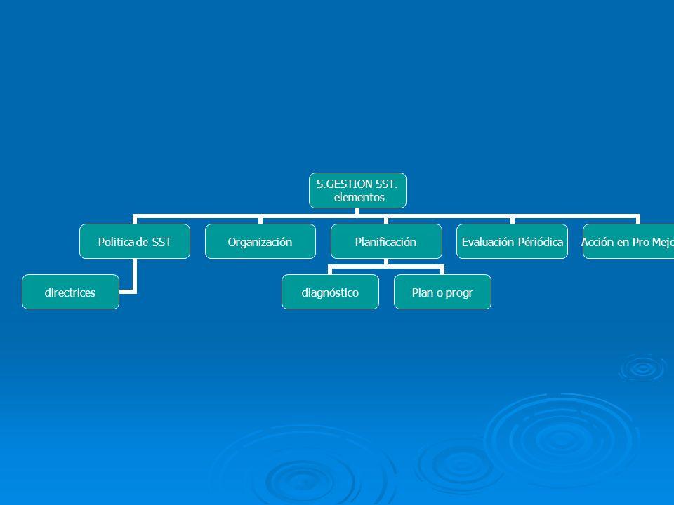 S.GESTION SST. elementos Politica de SST directrices OrganizaciónPlanificación diagnósticoPlan o progr Evaluación Périódica Acción en Pro Mejoras