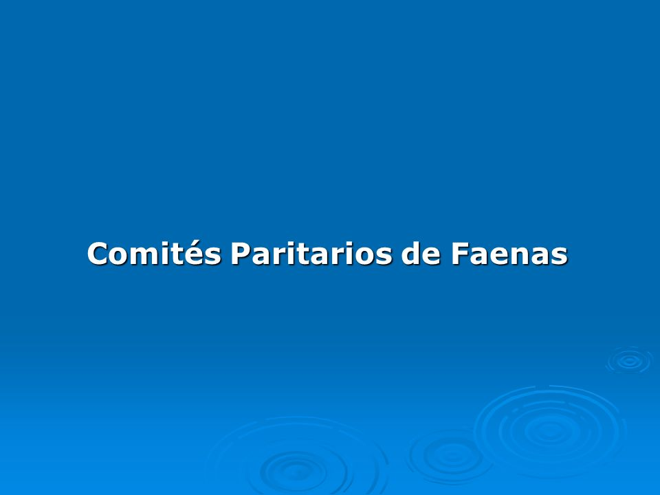 Comités Paritarios de Faenas