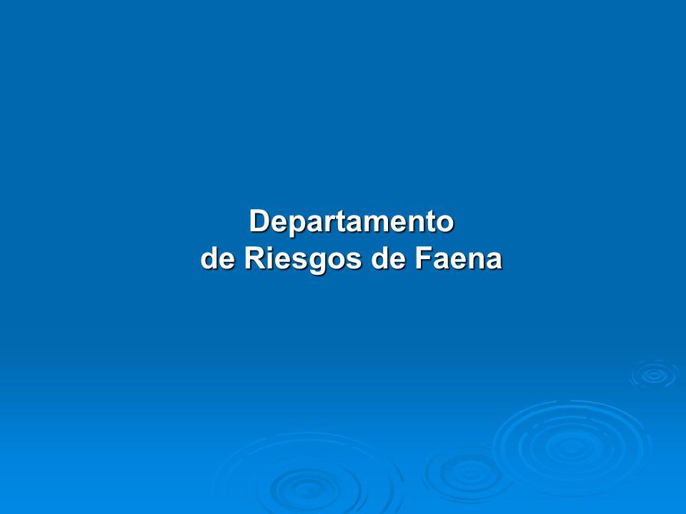 Departamento de Riesgos de Faena