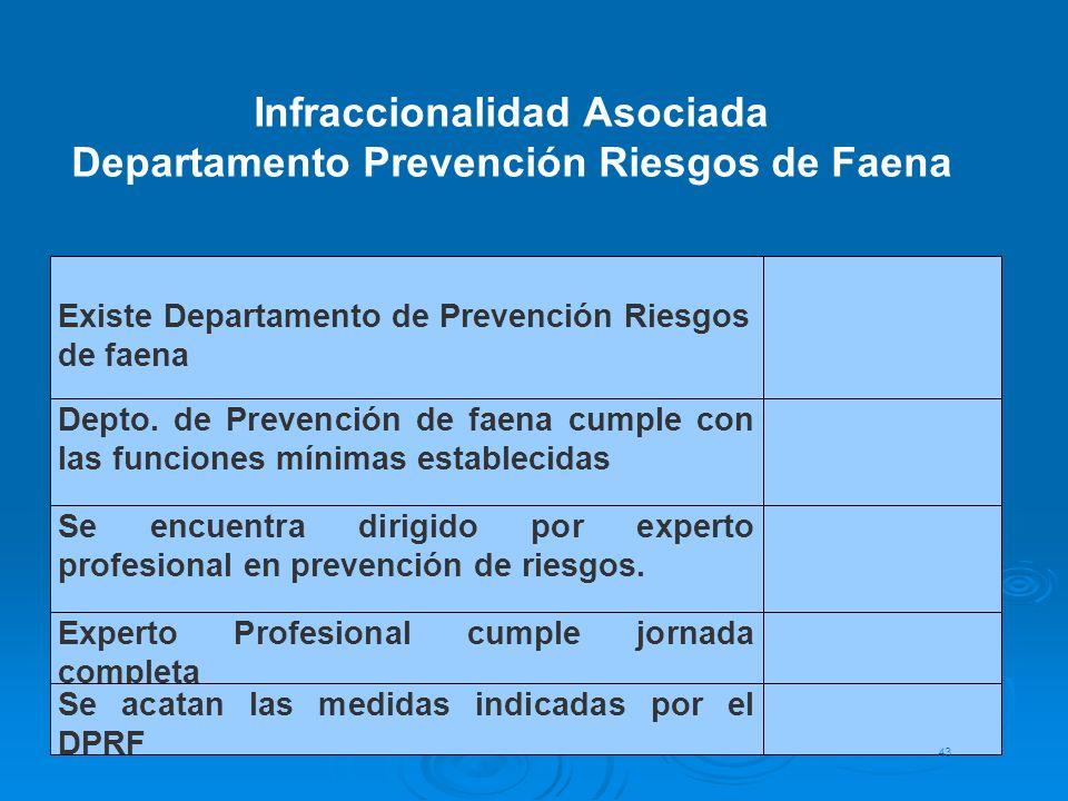 Existe Departamento de Prevención Riesgos de faena Depto. de Prevención de faena cumple con las funciones mínimas establecidas Se encuentra dirigido p