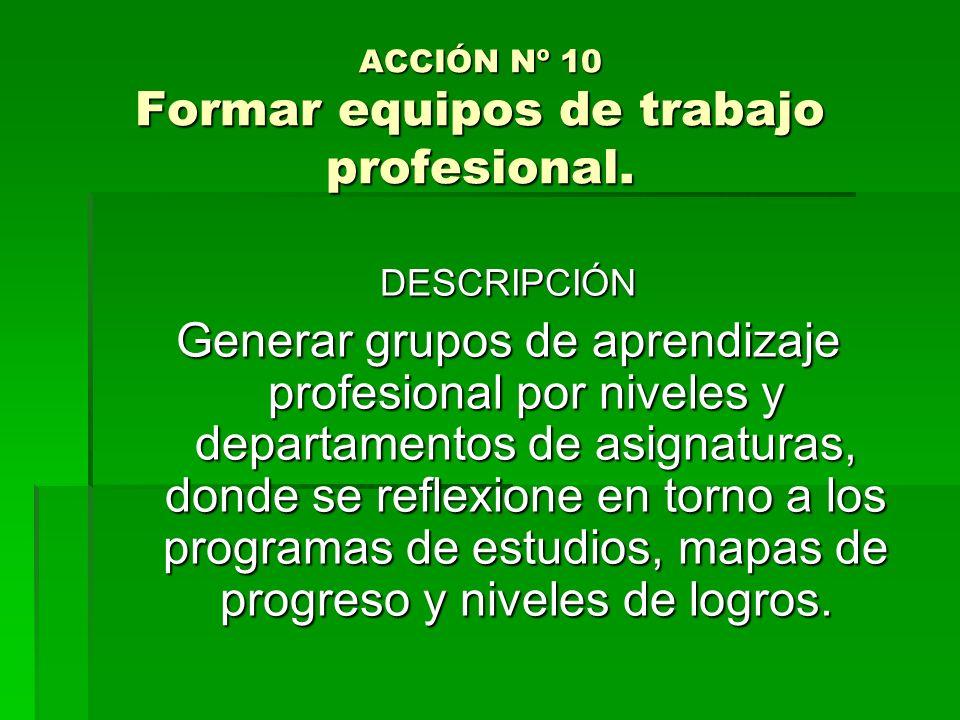 ACCIÓN Nº 10 Formar equipos de trabajo profesional. DESCRIPCIÓN Generar grupos de aprendizaje profesional por niveles y departamentos de asignaturas,