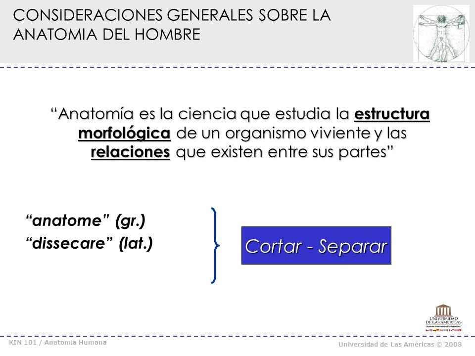 KIN 101 / Anatomía Humana Universidad de Las Américas © 2008 CONSIDERACIONES GENERALES SOBRE LA ANATOMIA DEL HOMBRE Anatomía Descriptiva: describe y muestra la organización de las estructuras.