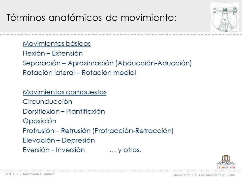 KIN 101 / Anatomía Humana Universidad de Las Américas © 2008 Términos anatómicos de movimiento: