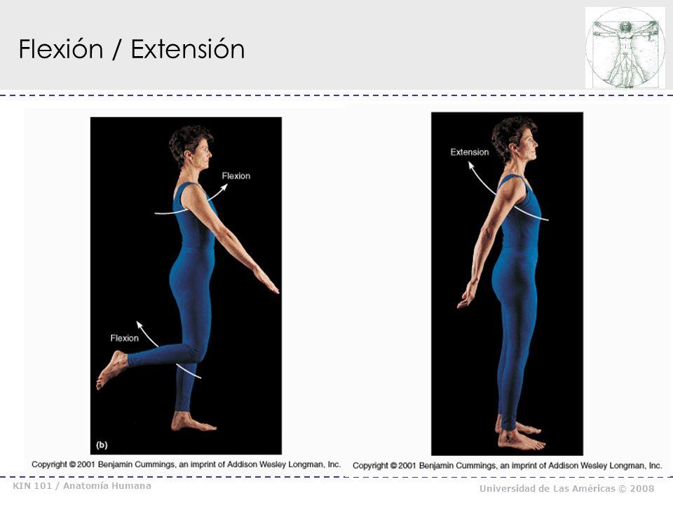 KIN 101 / Anatomía Humana Universidad de Las Américas © 2008 Abducción / Aducción /Circunducción