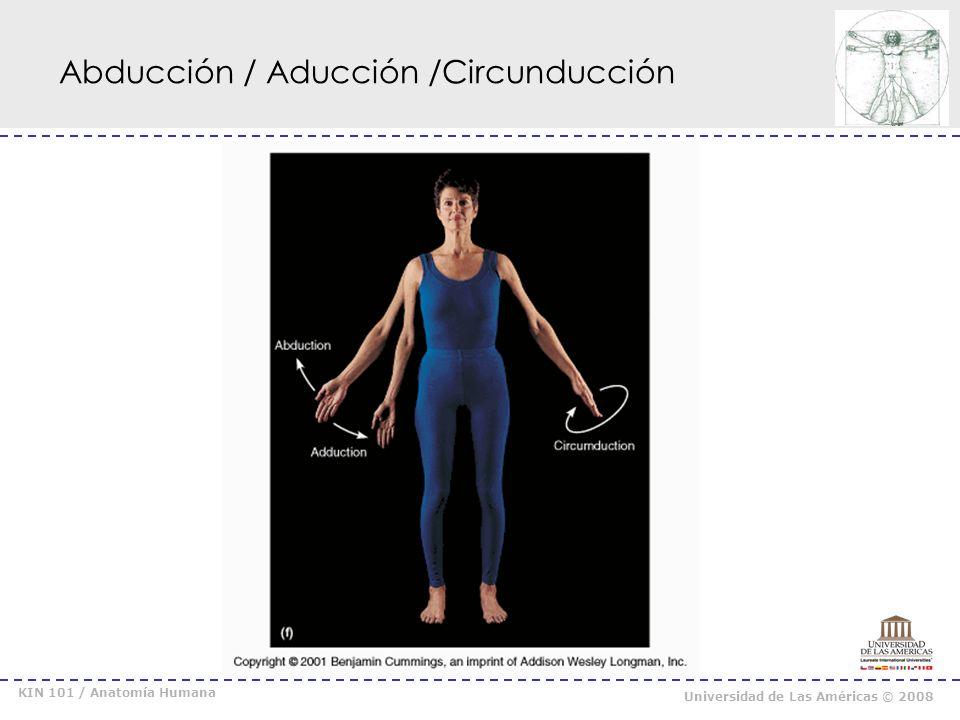 KIN 101 / Anatomía Humana Universidad de Las Américas © 2008 Rotación