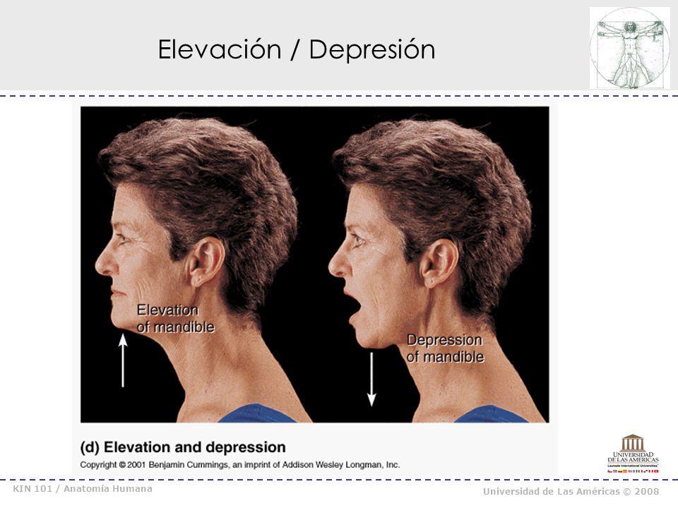 KIN 101 / Anatomía Humana Universidad de Las Américas © 2008 Oposición