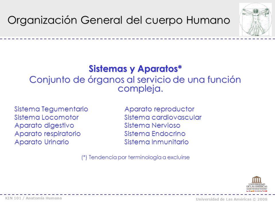 KIN 101 / Anatomía Humana Universidad de Las Américas © 2008 Bibliografía : * Moore, Capítulo de introducción.