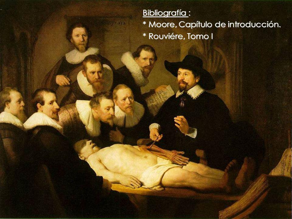 KIN 101 / Anatomía Humana Universidad de Las Américas © 2008 Bibliografía : * Moore, Capítulo de introducción. * Rouviére, Tomo I