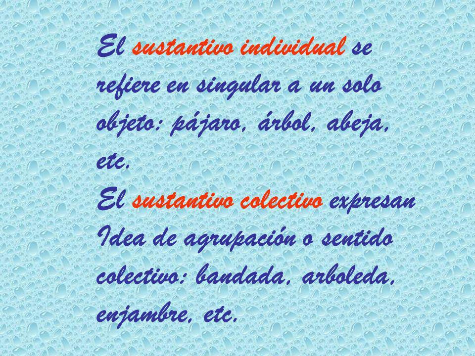 El sustantivo individual se refiere en singular a un solo objeto: pájaro, árbol, abeja, etc. El sustantivo colectivo expresan Idea de agrupación o sen