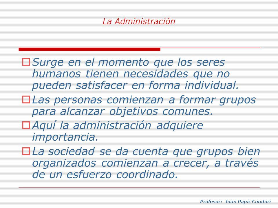 Profesor: Juan Papic Condori La tarea del administrador adquiere valor, por los resultados que logra el grupo.