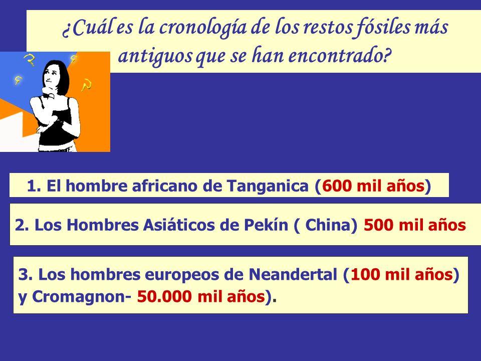 ¿Cuál es la cronología de los restos fósiles más antiguos que se han encontrado? 3. Los hombres europeos de Neandertal (100 mil años) y Cromagnon- 50.