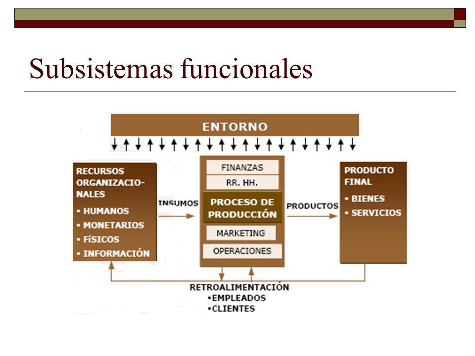 Interrelaciones con el medio La viabilidad del sistema depende de la capacidad de adaptación al medio.