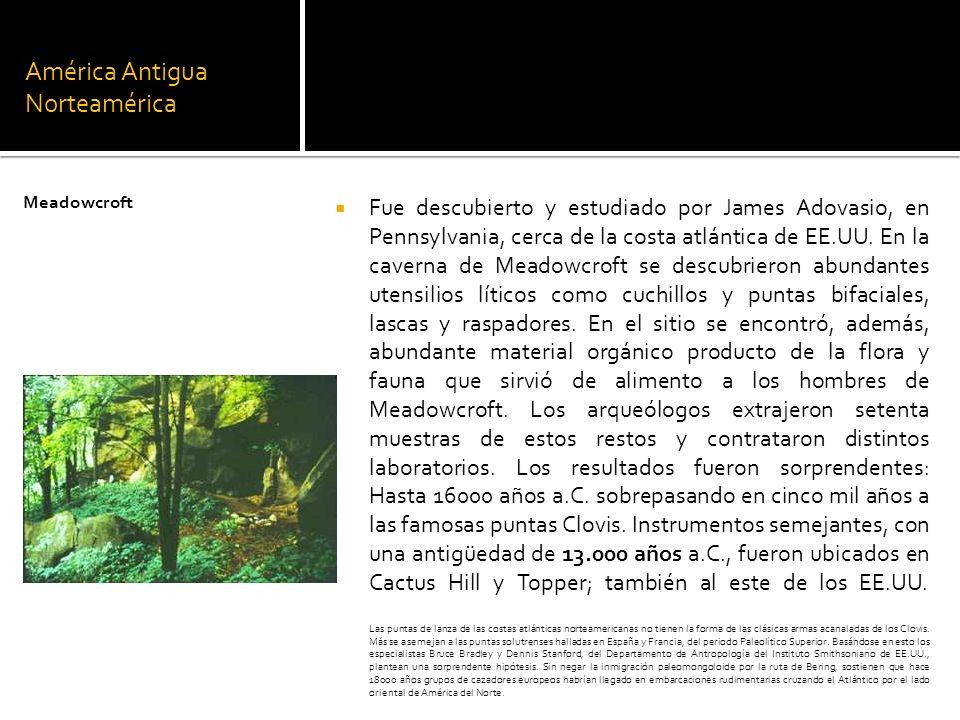 América Antigua Norteamérica Fue descubierto y estudiado por James Adovasio, en Pennsylvania, cerca de la costa atlántica de EE.UU. En la caverna de M