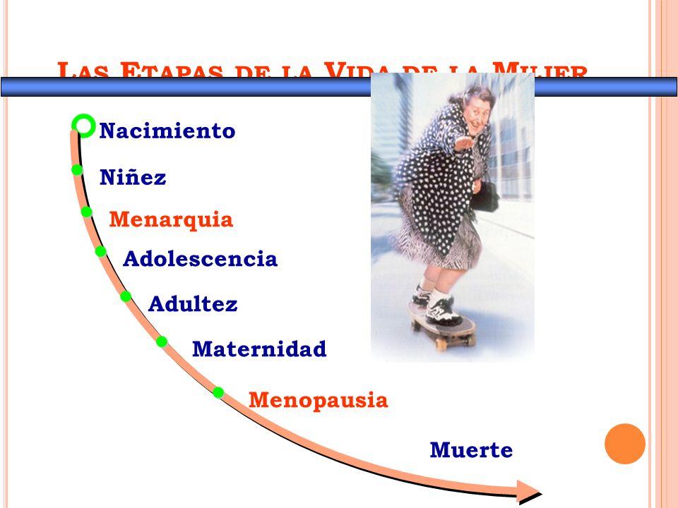 Los ejercicios actúan sobre …… OSTEOPOROSIS OBESIDAD INCONTINENCIA URINARIA HIPERTENSIÓN ARTERIAL SARCOPENIA PERDIDA DEL EQUILIBRIO DEPRESIÓN Y ANSIEDAD ALTERACIONES DEL SUEÑO DISMINUIR EL RIESGO DE DISCAPACIDAD O FORTALECER LA AUTOVALENCIA