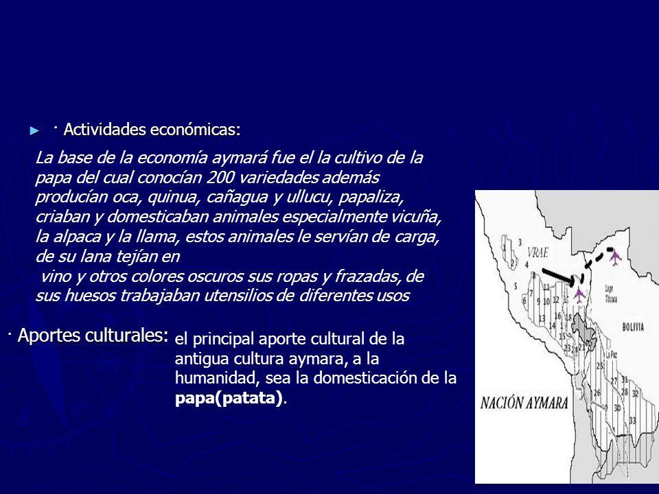 · Actividades económicas: · Actividades económicas: La base de la economía aymará fue el la cultivo de la papa del cual conocían 200 variedades además