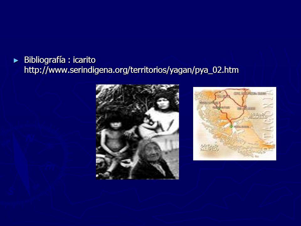 Bibliografía : icarito http://www.serindigena.org/territorios/yagan/pya_02.htm Bibliografía : icarito http://www.serindigena.org/territorios/yagan/pya