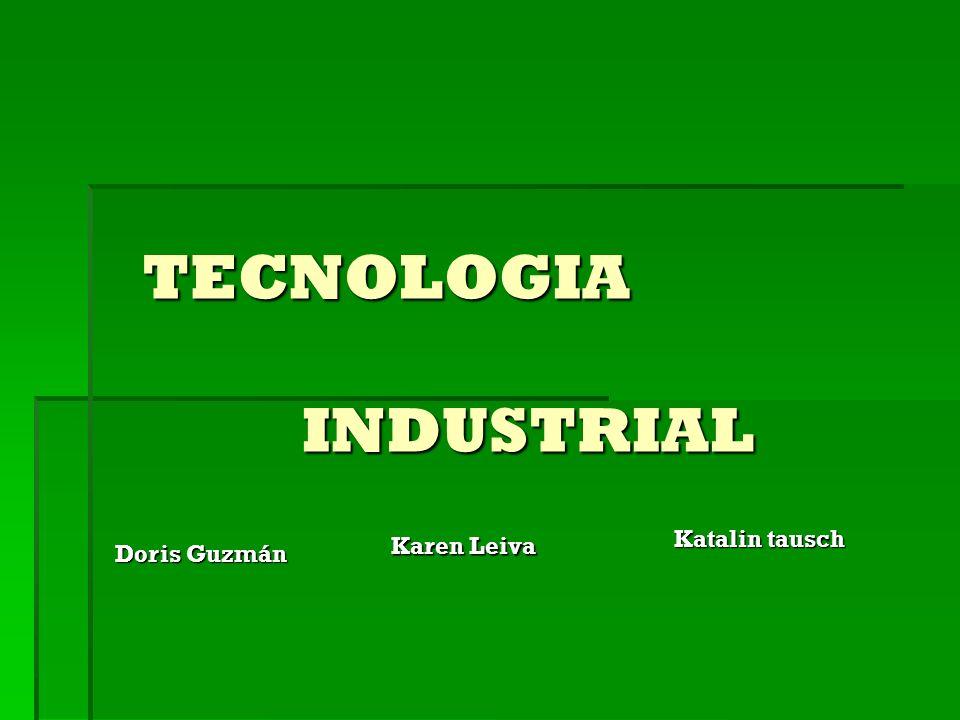 TECNOLOGIA INDUSTRIAL INDUSTRIAL Doris Guzmán Karen Leiva Katalin tausch