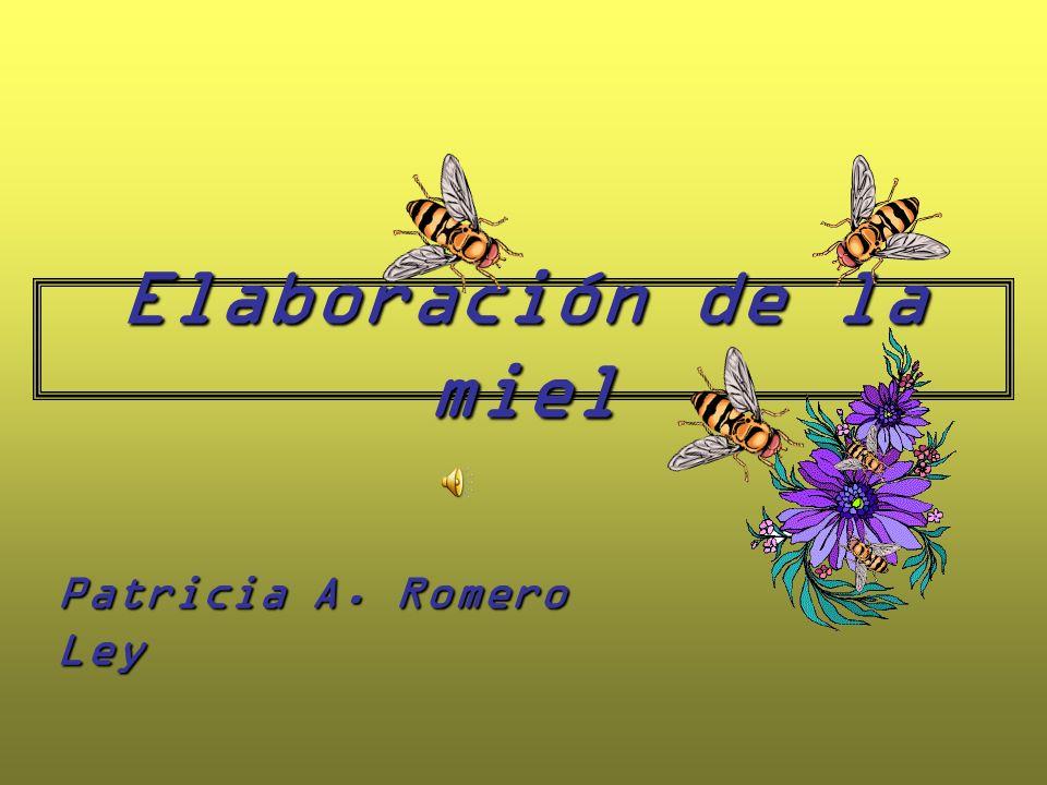 Elaboración de la miel Patricia A. Romero Ley