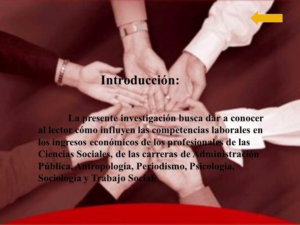Competencias Laborales Que Poseen Los Profesionales En La Actualidad.