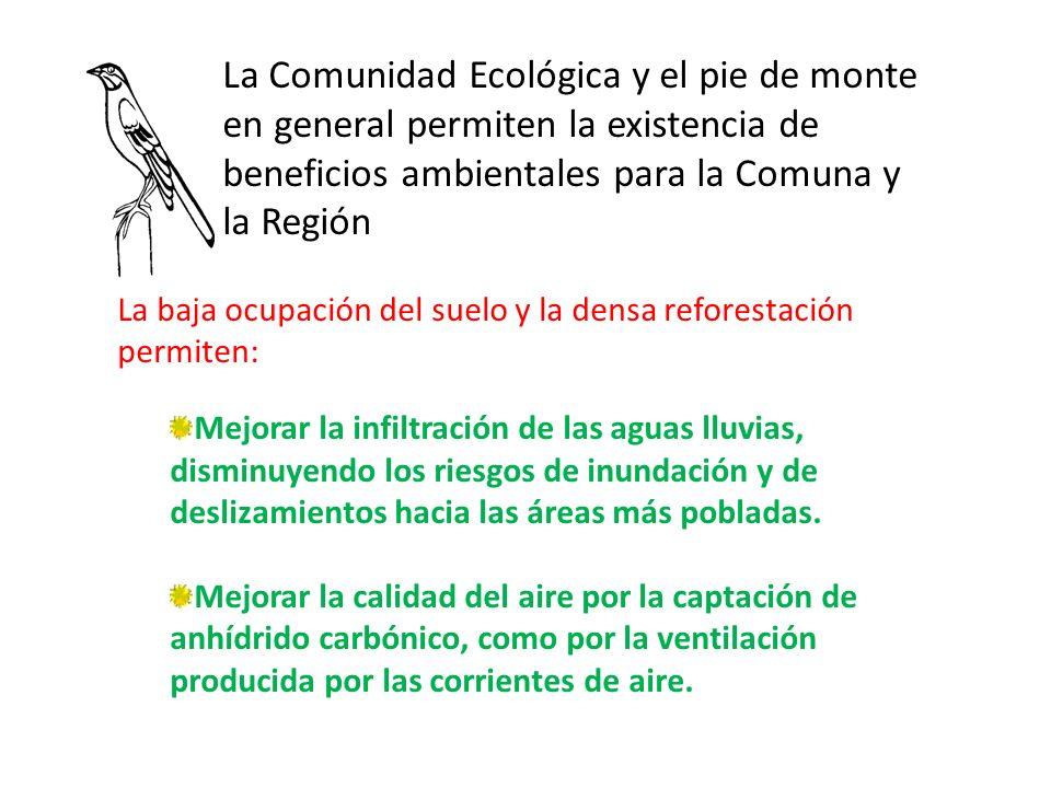 La Comunidad Ecológica y el pie de monte en general permiten la existencia de beneficios ambientales para la Comuna y la Región La baja ocupación del suelo y la densa reforestación permiten: Mejorar la infiltración de las aguas lluvias, disminuyendo los riesgos de inundación y de deslizamientos hacia las áreas más pobladas.
