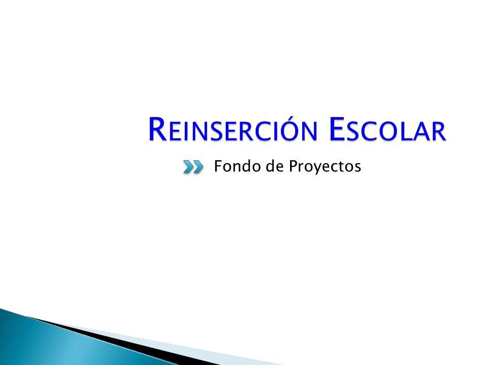 Fondo de Proyectos