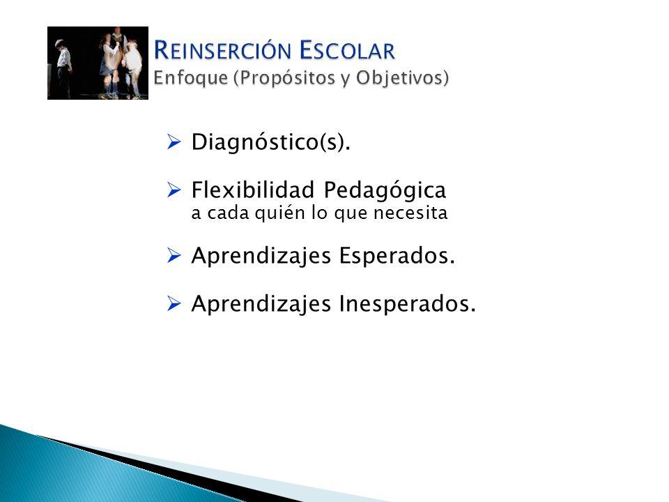 Diagnóstico(s). Flexibilidad Pedagógica a cada quién lo que necesita Aprendizajes Esperados. Aprendizajes Inesperados.