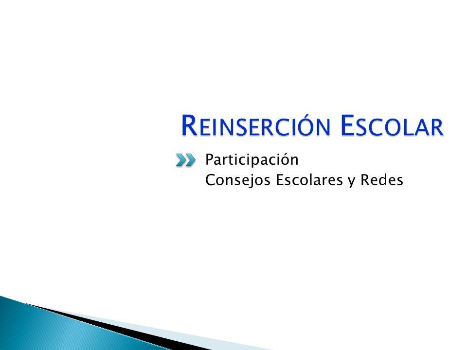 Participación Consejos Escolares y Redes