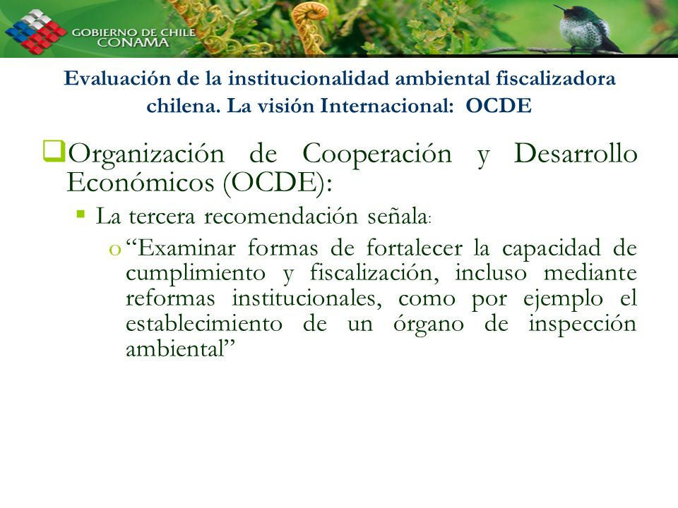 Evaluación de la institucionalidad ambiental fiscalizadora chilena. La visión Internacional: OCDE Organización de Cooperación y Desarrollo Económicos