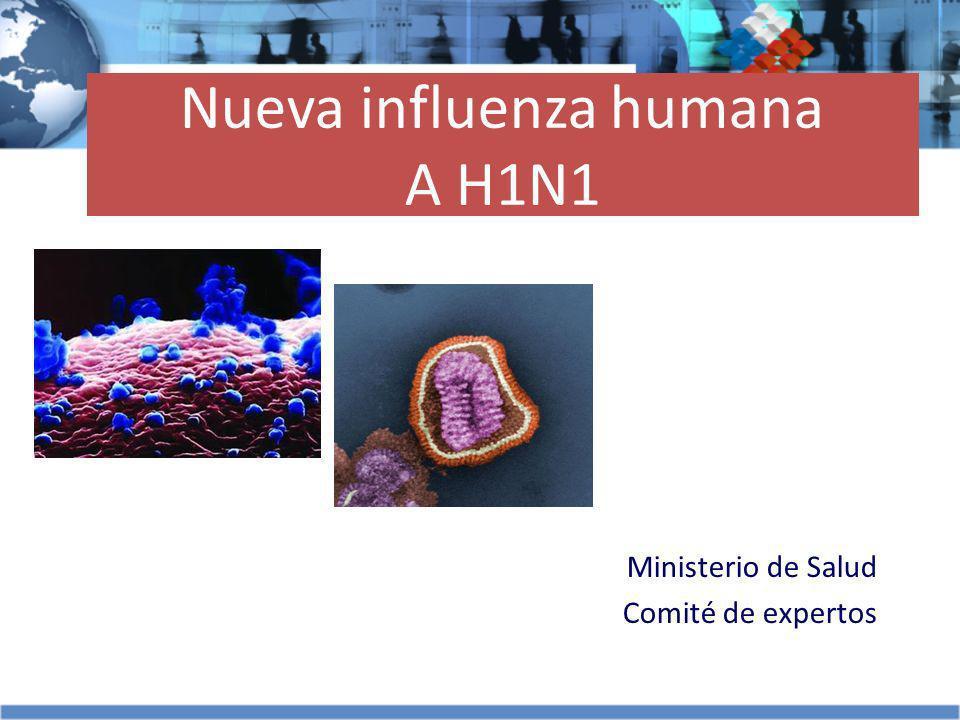 Nueva influenza humana A H1N1 Ministerio de Salud Comité de expertos