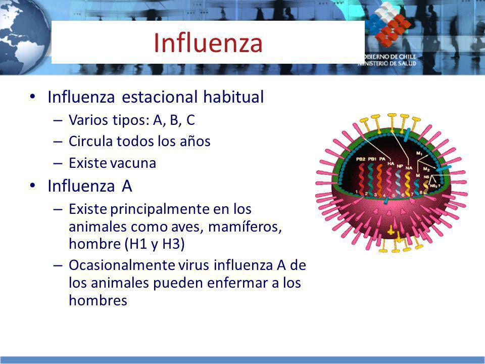 Influenza Influenza estacional habitual – Varios tipos: A, B, C – Circula todos los años – Existe vacuna Influenza A – Existe principalmente en los an