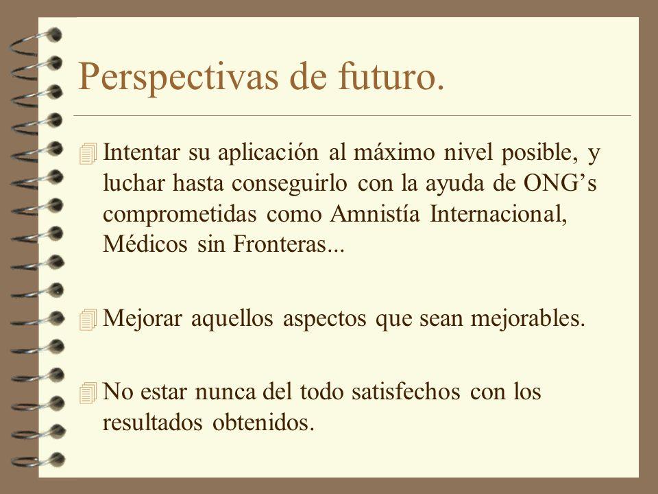 Perspectivas de futuro. 4 Intentar su aplicación al máximo nivel posible, y luchar hasta conseguirlo con la ayuda de ONGs comprometidas como Amnistía