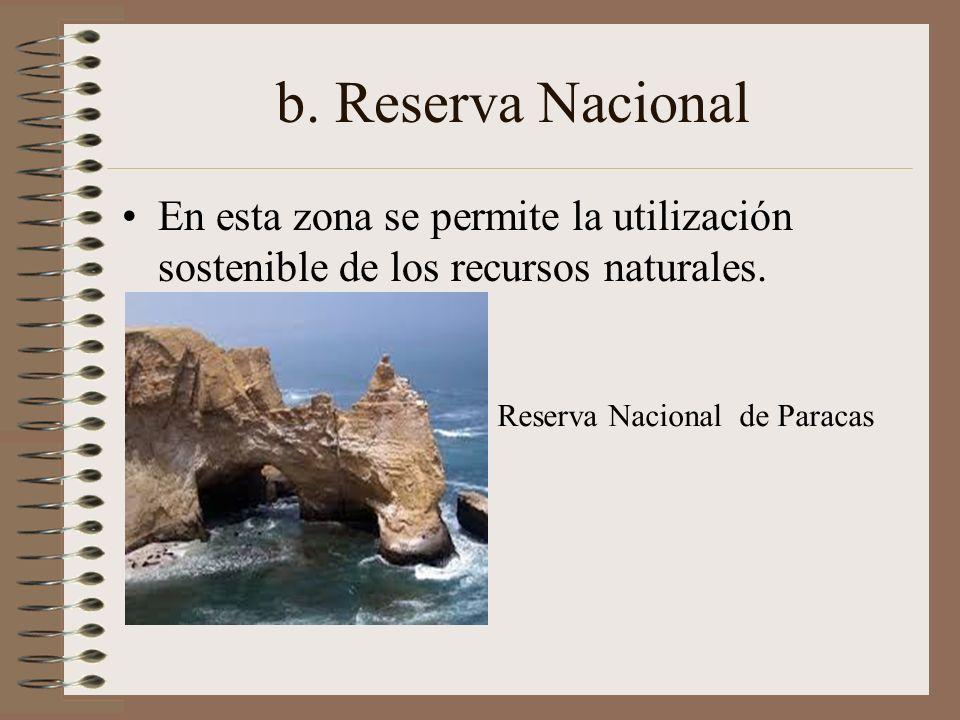 b. Reserva Nacional En esta zona se permite la utilización sostenible de los recursos naturales. Reserva Nacional de Paracas