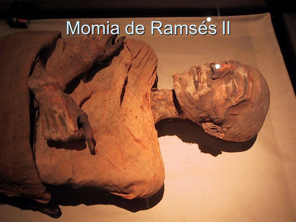Cuerpo Momificado junto a Anubis