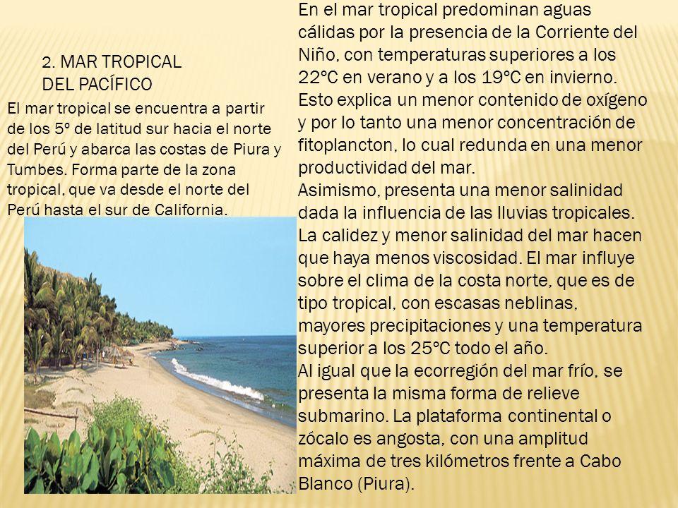 2. MAR TROPICAL DEL PACÍFICO En el mar tropical predominan aguas cálidas por la presencia de la Corriente del Niño, con temperaturas superiores a los