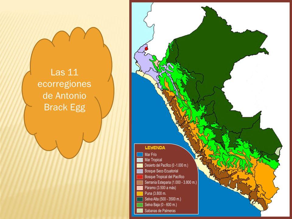 Las 11 ecorregiones de Antonio Brack Egg